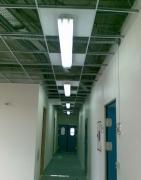 Квартиры, офисы под ключ. Ремонт потолка и замена электрики в офисе.