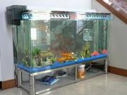 Установка зеркала цена. Если Вы хотите установить большой аквариум с зеркальной стенкой- пригласите наших специалистов!